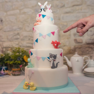Tiny Sarahs Cakes